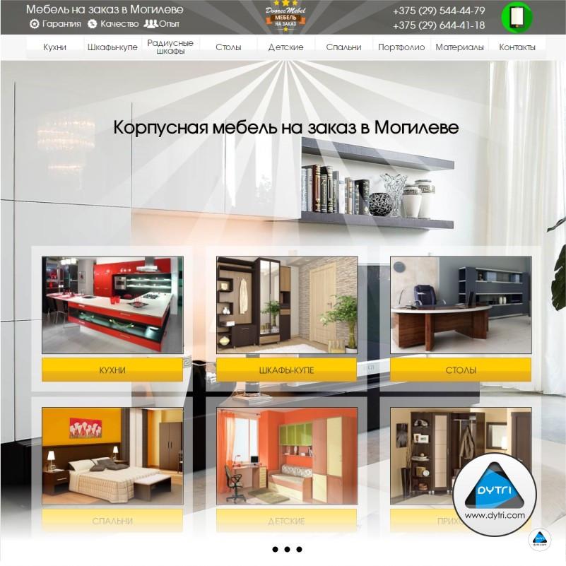 Портфолио: примеры работ по созданию и дизайну сайтов dytri.